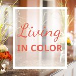 color in living spaces