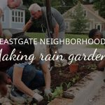 Rain Gardens in Eastgate Neighborhood