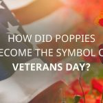 POPPIES A SYMBOL OF VETERANS DAY